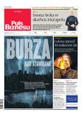 Puls Biznesu - 2017-11-24