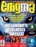 Enigma - 2017-10-11