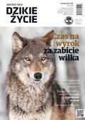 Dzikie Życie - 2016-10-05