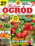 Kocham Ogród - 2017-10-12