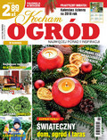 Kocham Ogród - 2017-11-11