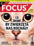 Focus - 2017-06-24