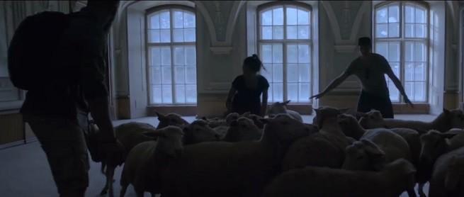 Ruszyła kampania zachęcająca do ostrzegania się przed burzami (wideo)