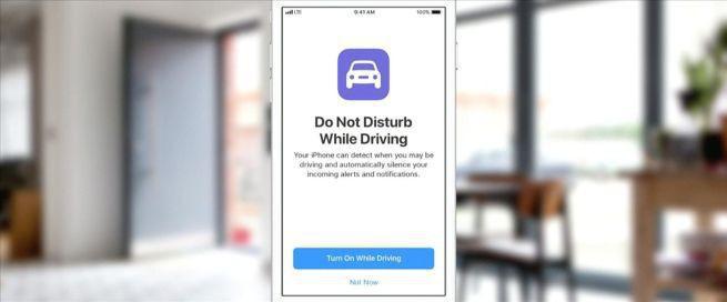 """Po wprowadzeniu iOS 11 z App Store może zniknąć 187 tysięcy aplikacji. """"Deweloperzy muszą się przystosować"""""""