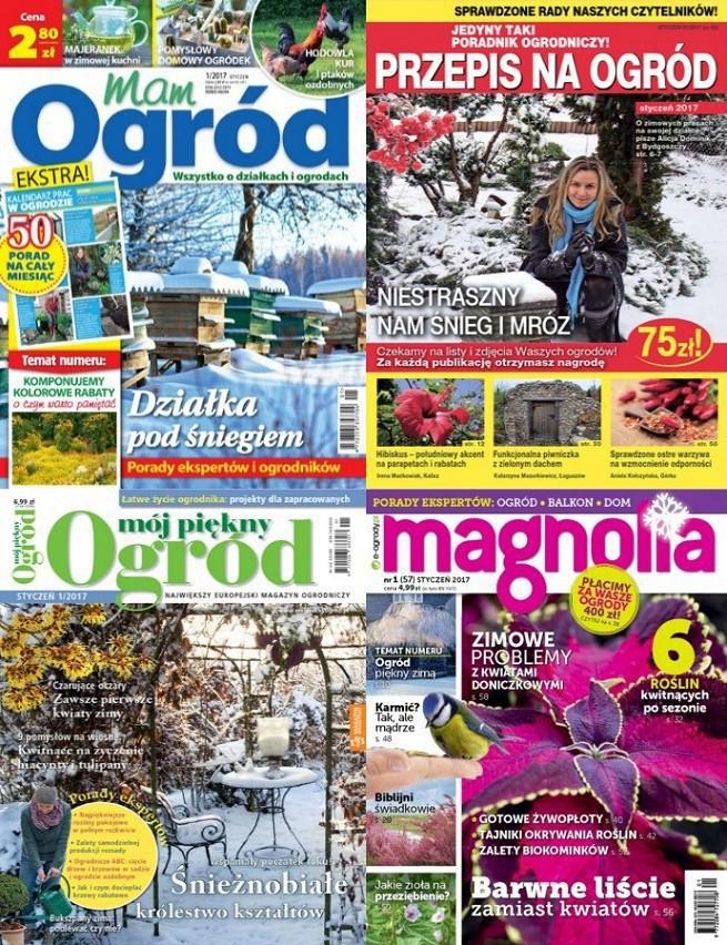 """""""Działkowiec"""" liderem wśród pism ogrodniczych w lipcu, """"Mój Piękny Ogród"""" straciła najwięcej"""