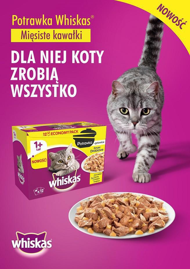Whiskas Potrawka promowana w digitalu i telewizji