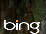 Bing ma wUSA więcej użytkowników niż Twitter