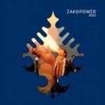 Zakopower rządzi polskim rynkiem muzycznym