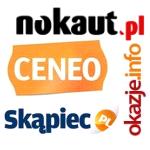 Po karze Google: porównywarki odrobiły straty, Fotka.pl bez połowy użytkowników