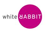Cezary Zieliński: z Saatchi & Saatchi Direct do White Rabbit