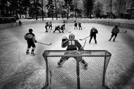 vladimirpesnya-vetlugashockey2jpg_1455803288.jpg
