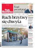 Puls Biznesu - 2019-02-01