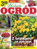 Kocham Ogród - 2019-03-23