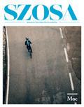 Szosa - 2017-03-30