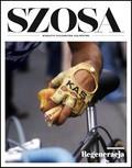 Szosa - 2019-01-30
