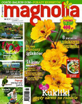 Magnolia - 2015-04-16