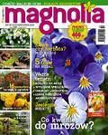 Magnolia - 2015-09-17