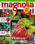 Magnolia - 2015-11-19