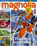 Magnolia - 2015-12-17