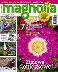Magnolia - 2016-01-14