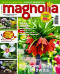 Magnolia - 2016-03-10