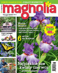 Magnolia - 2016-05-13