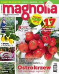 Magnolia - 2016-11-15