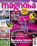 Magnolia - 2016-12-08