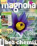 Magnolia - 2017-03-10