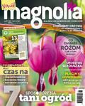 Magnolia - 2017-04-13