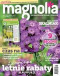 Magnolia - 2017-06-14