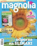 Magnolia - 2017-07-14