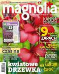 Magnolia - 2017-08-10