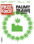 Przekrój - 2012-02-13