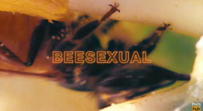 japoński film animowany porno ruda gorąca cipka