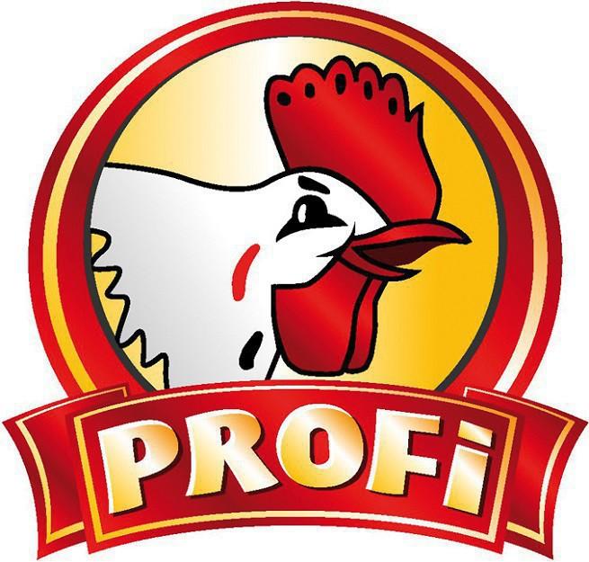 Znalezione obrazy dla zapytania profi logo